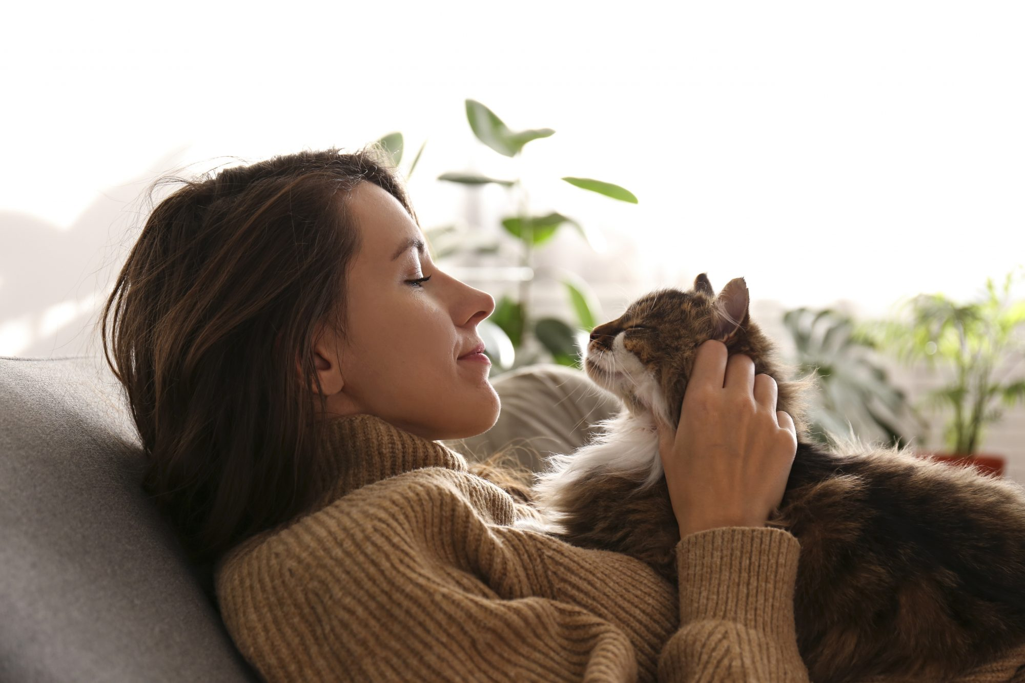 Female hugging her cute long hair kitty.